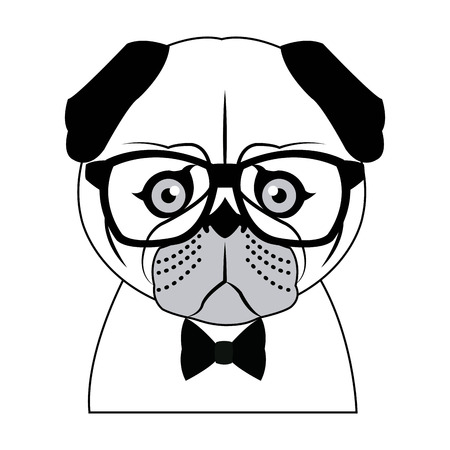 human face: Portrait of a pug dog in glasses and a bow tie. Vector picture with the inscription