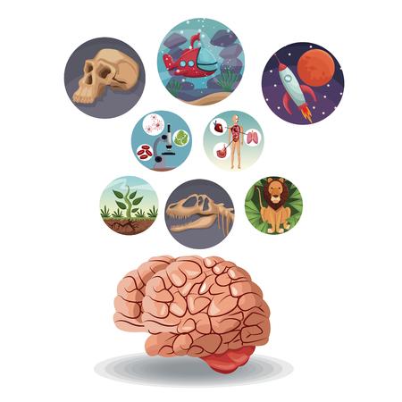 Icone circolari di colore con l'evoluzione del mondo dell'immagine dentro con sopra l'illustrazione di vettore del cervello Archivio Fotografico - 78975356