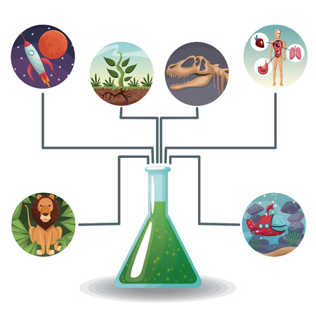 bacteria cell: conceptual map connected of color circular icons with picture world evolution to glass beaker with formula vector illustration Illustration