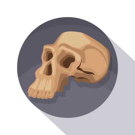 australopithecus: circular frame shading of poster closeup human skull vector illustration Illustration