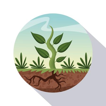 circular frame shading of poster closeup growing plant vector illustration Illustration