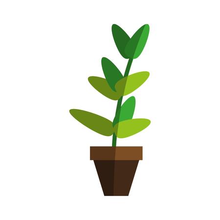 plant in pot icon image vector illustration design