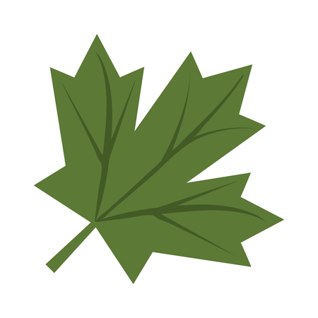 janeiro: Leaf flat icon vector design graphic illustration