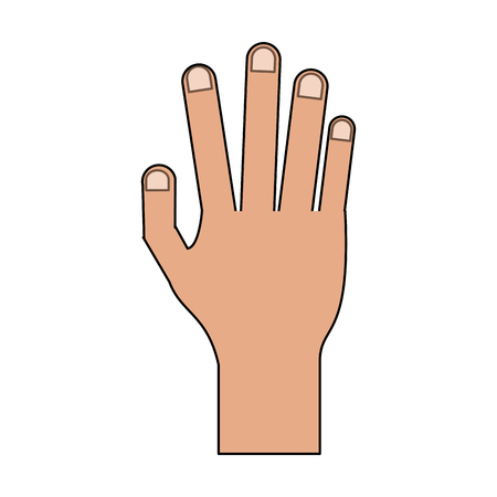 color image cartoon realistic hand human palm vector illustration