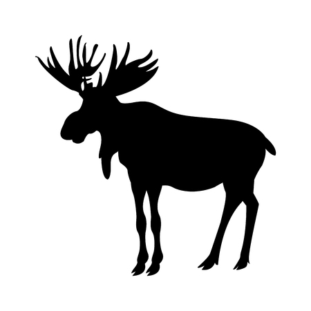 Illustration of an elk. Illustration