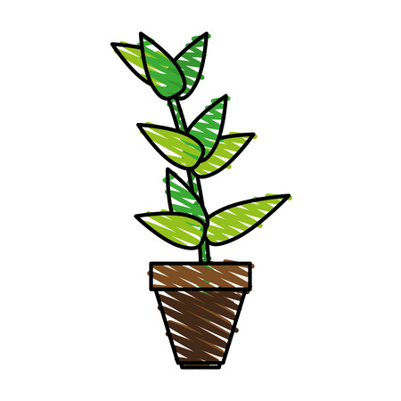matera plants inside vector icon illustration design graphic sketch Illustration