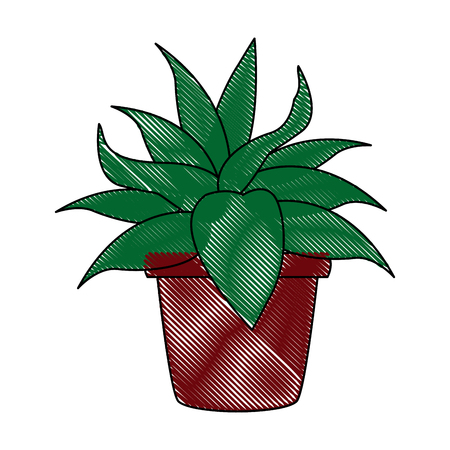 houseplants: pot plant ornate natural decoration image vector illustration