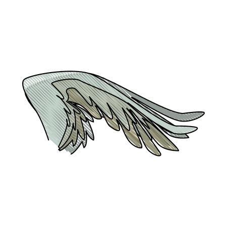spread out pegasus bird or angel wing vector illustration