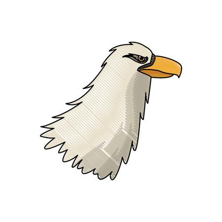 eagle head beak predator feather image vector illustration