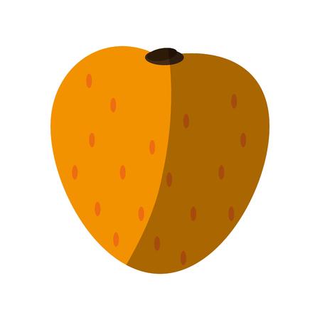 Melone süße Obst-Symbol Vektor-Illustration Design-Grafik Standard-Bild - 80238391