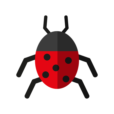 Wonderful ladybug insect illustration icon vector design graphic shadow Illustration