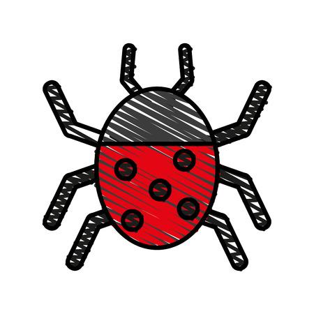 Wonderful ladybug insect illustration icon vector design graphic doodle