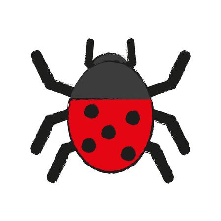 maleza: Maravilloso mariquita ilustración de insectos icono vector diseño gráfico dibujar