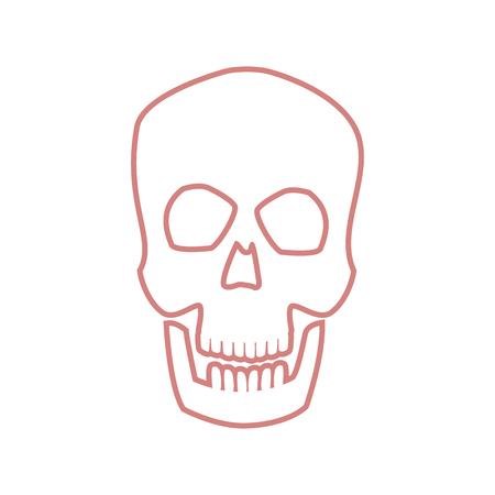 skull human head bone medicine concept vector ilustration Illustration