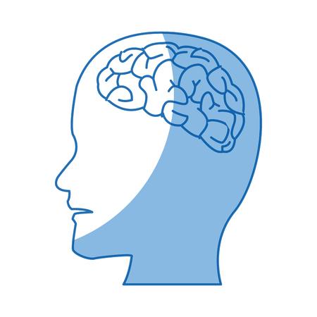 profile human head with brain anatomy vector illustration Illustration