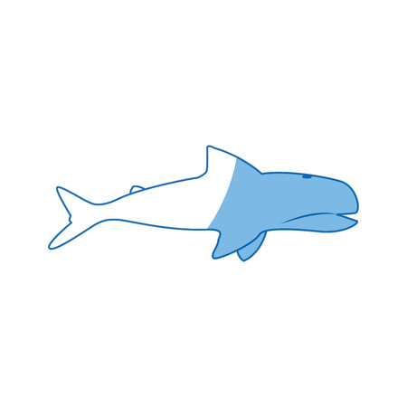 underwater fishes: whale wildlife water animal silhouette vector illustration