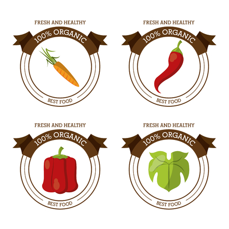 colorful   set of fresh and healthy organic food with chili carrot lettuce and peppers vector illustration Illustration