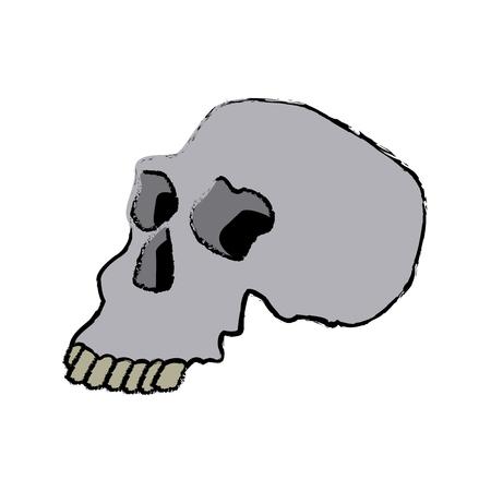 Skull human structure anatomy bone icon vector illustration