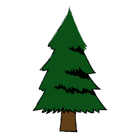 pine tree foliage trunk forest vegetation icon vector illustration Illustration
