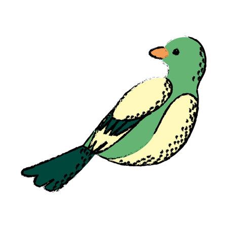 beak: cute bird exotic beak feather adorable icon vector illustration Illustration
