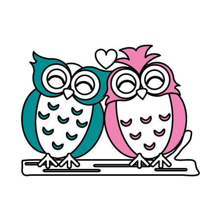 Flat line teal and pink owls with heart over white background vector illustration