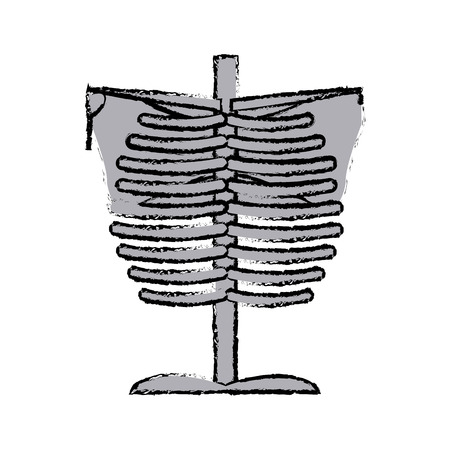 skeleton chest human part anatomy vector illustration Illustration