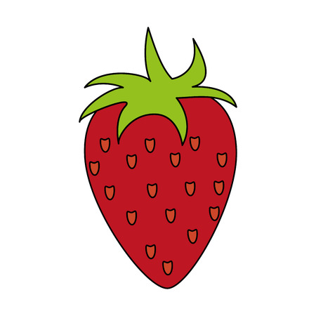 market gardening: strawberry fruit over white background vector illustration