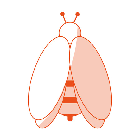 Bee insect icon image vector illustration design