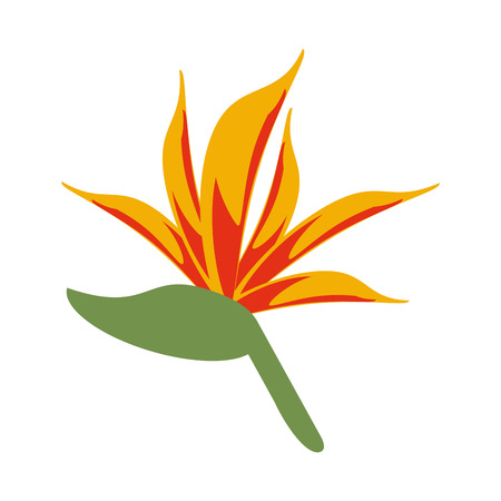 small delicate flowers icon image vector illustration draw Banco de Imagens - 81138121