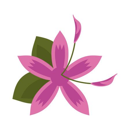 Small delicate flowers icon image vector illustration draw Banco de Imagens - 81136555