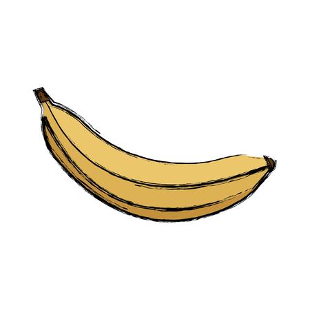 banana fresh fruit dieting nutrition concept vector illustration
