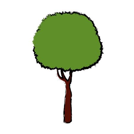 Arbre pour parc forestier et plante de jardin illustration vectorielle naturelle Banque d'images - 81165237