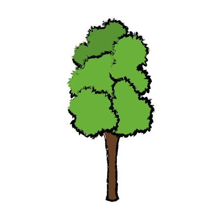 Arbre pour parc forestier et plante de jardin illustration vectorielle naturelle Banque d'images - 81165244