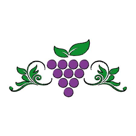 Uvas estilizadas hojas de elemento de diseño de vino para ilustración vectorial orgánica Foto de archivo - 81165286
