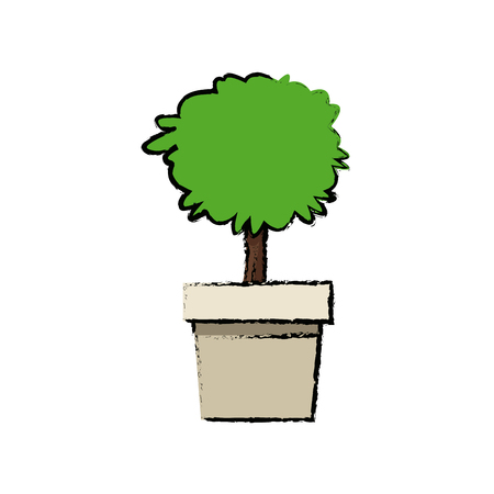potted plant tree natural decoration foliage vector illustration