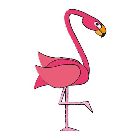 Exotic animal swan draw vector illiustration design graphic Illustration