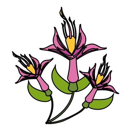 small delicate flowers icon image vector illustration graphic Banco de Imagens - 81190177