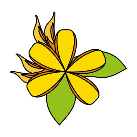 small delicate flowers icon image vector illustration graphic Banco de Imagens - 81190176