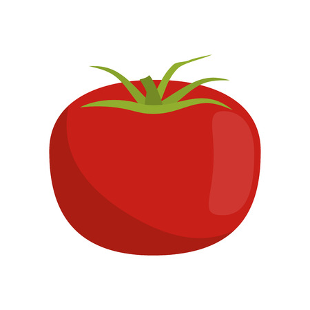 market gardening: tomato fruit icon image vector illustration design