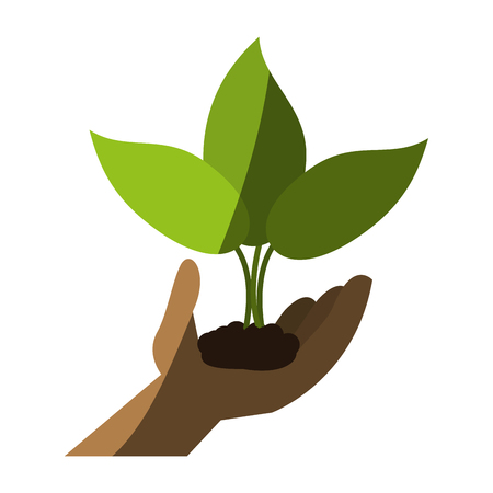 plant sprout with hand icon image vector illustration design