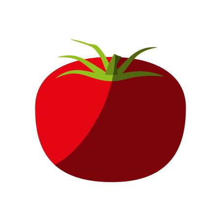 Tomato fruit icon image vector illustration design