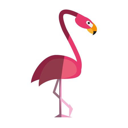 Exotic animal swan shadow  vector illiustration design graphic Illustration