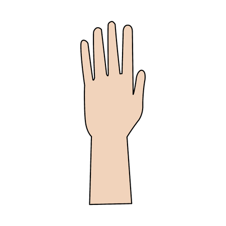 outstretched: hand people part fingers open up vector illustration