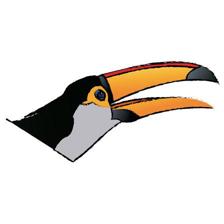 toucan bird on the nature in brazil vector illustration