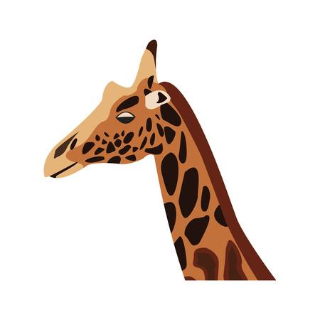 herbivore: giraffe head herbivore african wildlife vector illustration