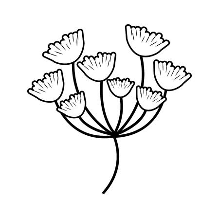 vegetate: shell shape leaves icon image vector illustration design