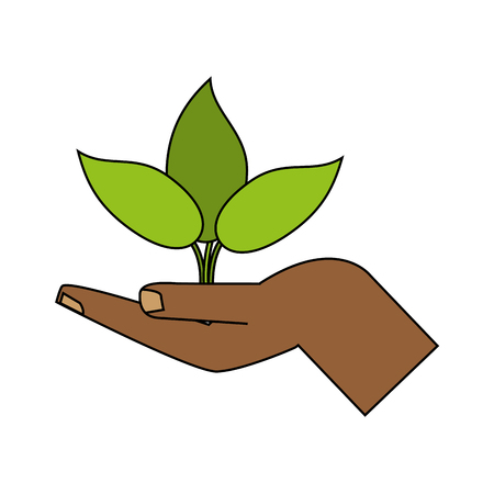 hand holding plant icon image vector illustration design