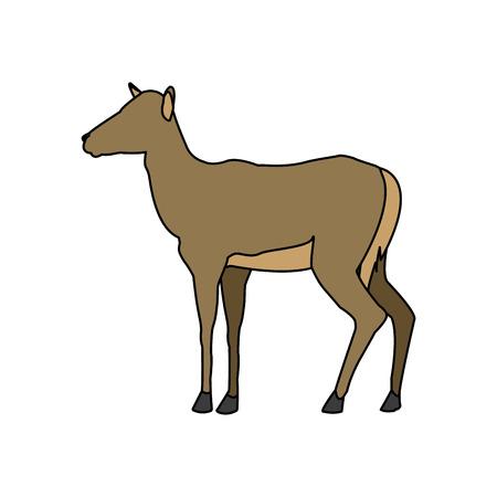portrait of a standing impala africa mammal wild vector illustration
