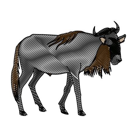 wildebeest standing african wildlife animal vector illustration