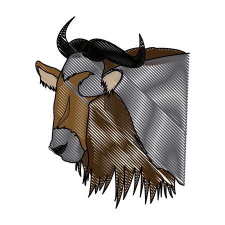 head wildebeest african wildlife animal vector illustration